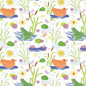 Summer at the Duck Pond with Ducks & Green Frogs