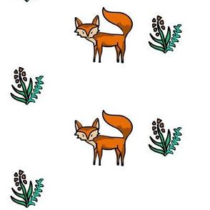 pretty Fox field