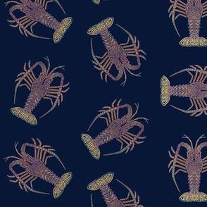 Spiny Lobster on Navy