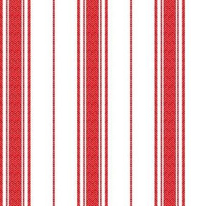 Chevron Stripe in Rouge