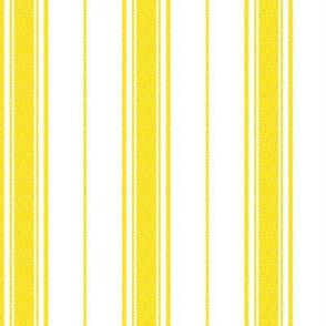 Chevron Stripe in Marigold