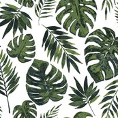 Rrtropical-leaves-white-01_shop_thumb
