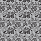 Anatomical Organ Variety Black on Grey Small