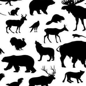 North American Animals // Large