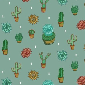 Earth Toned Cacti and Desert Blooms
