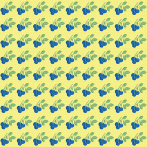 Blueberries on Yellow