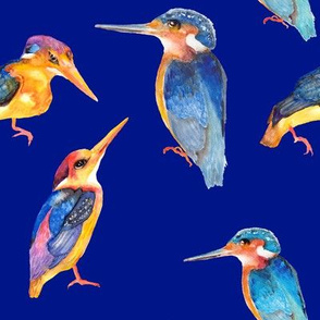watercolor kingfisher birds on deep blue