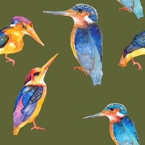 watercolor kingfisher birds on khaki