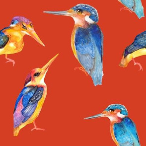 watercolor kingfisher birds on orange brick