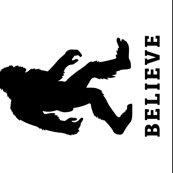 Rbigfoot_believe_tea_towel_shop_thumb