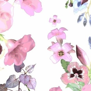 Allamandas in the Garden Pink