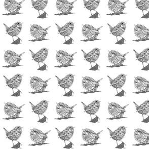 Robot Wrens