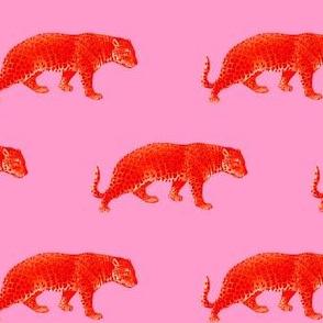 Vintage Cheetahs in Coral + Pink