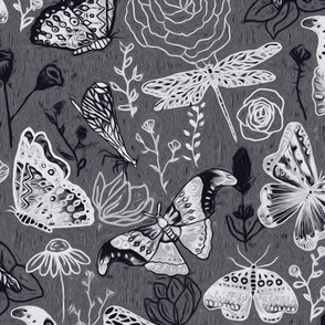 Dragonflies, Butterflies And Moths In  Black And White - Big