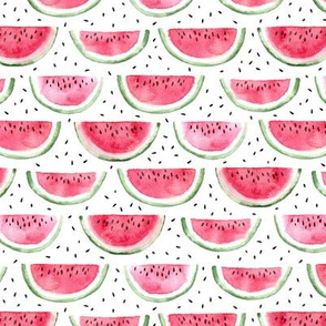 watercolor slices and seeds watermelon