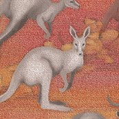 Rra-mob-of-kangaroos_shop_thumb
