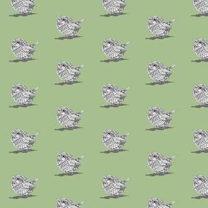 Robot Wren Green