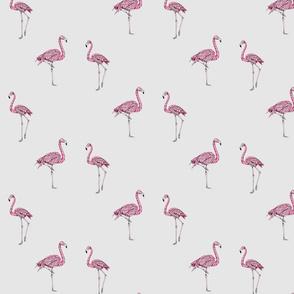 Hashtag Flamingo