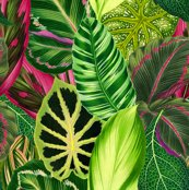 Rvintage-tropical-leaves_shop_thumb