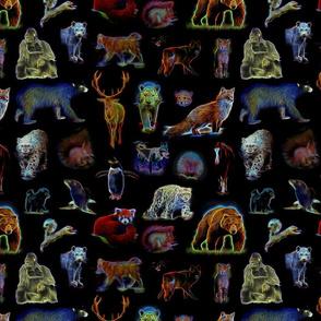 Wildlife Fractals