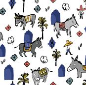 Moroccan Donkey