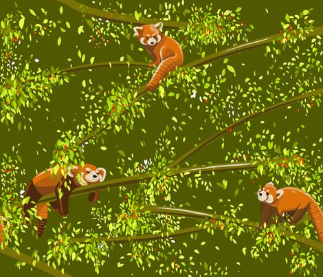 Hello Red Pandas! fabric by cinz on Spoonflower - custom fabric