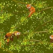 Rrhello-red-pandas_shop_thumb