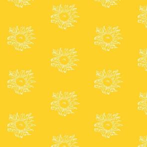 wild sunflower in yellow