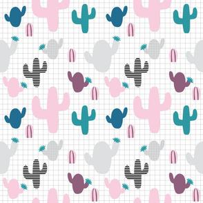 Alpaca cactus