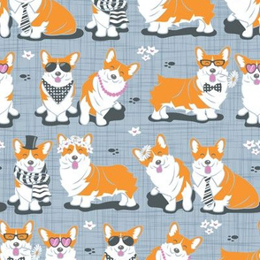 Charming corgis // grey background orange dogs