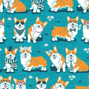 Charming corgis // teal background