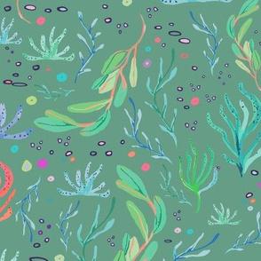 seaweeds green