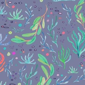 seaweeds lilas