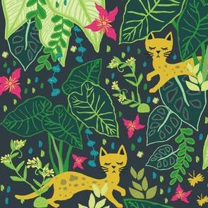 Little Cats in a Big Jungle
