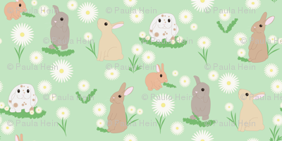 Bunnies-and-daisies