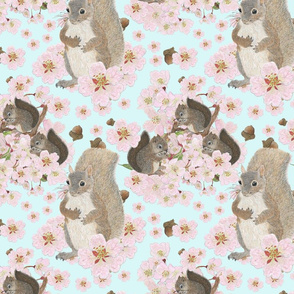 Squirrels Among the Cherry Blossoms