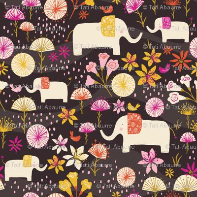 Elephants in Cerrado