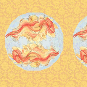 giant clam shell  yin-yang. bright
