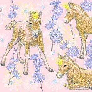 The Foal Royalty (pink)