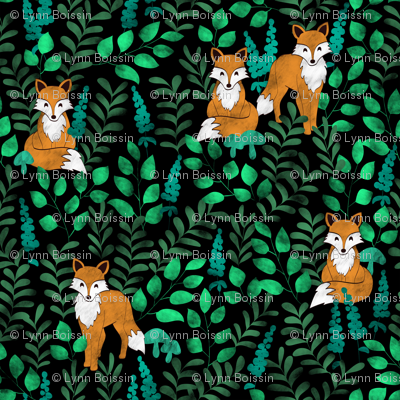 Red Foxes (Black)
