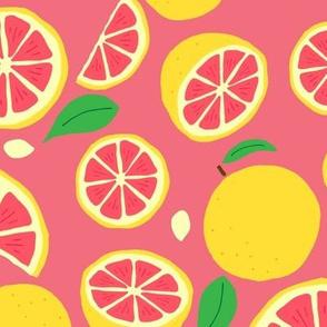 Hand Drawn Grapefruit   Pink