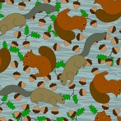 Rrrrrrrrsquirrels15_shop_thumb