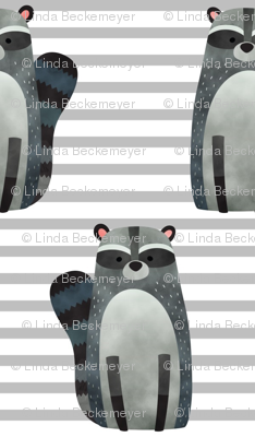 Raccoon,  Grey Stripe – Woodland Animals Baby Design, Ginger Lous