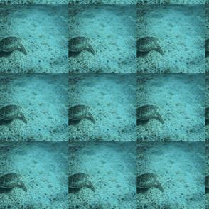 098BF334-7B99-4344-BFE6-C3DE46287D05-ch