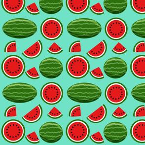 watermelon turquoise 8x8