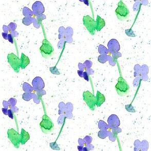 Lily's Lavender Flower