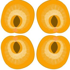 Apricot-large