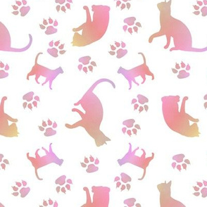 Cats pink white