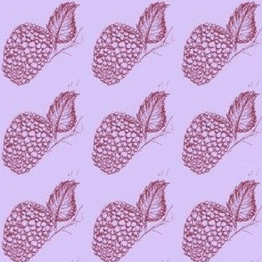 Rasspberry ripe-red on mauve