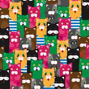 cat-01 pattern